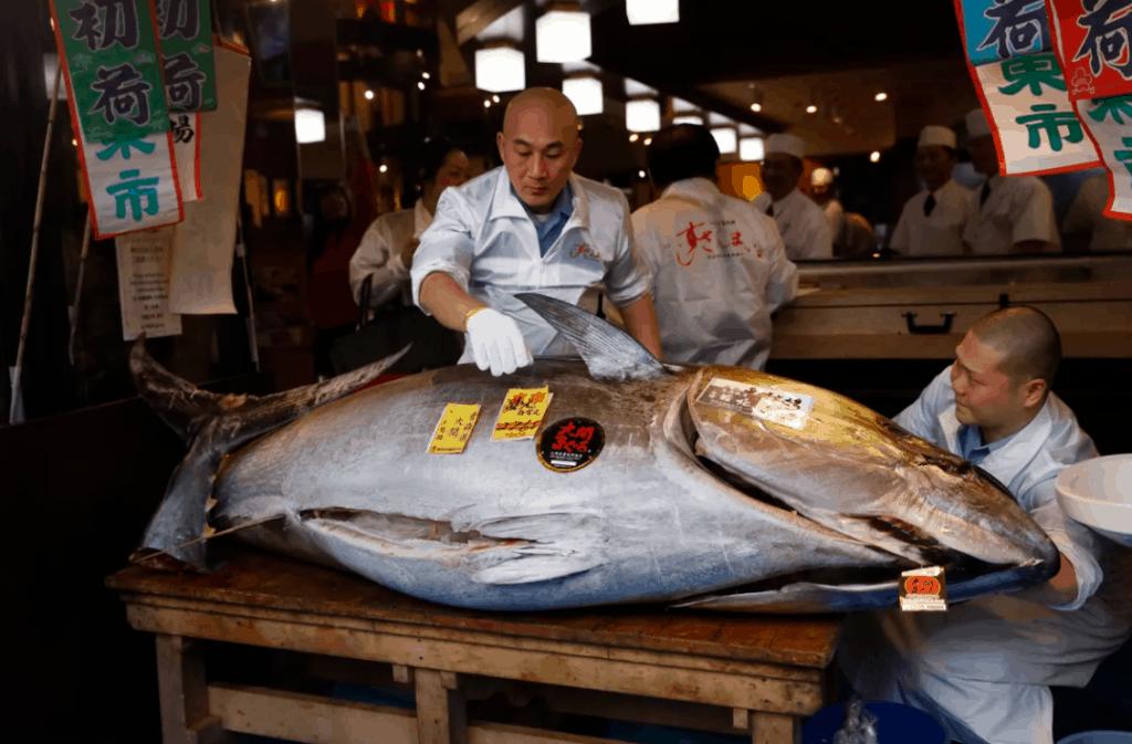 The Tuna King's Bluefin Tuna