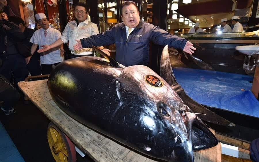 The Tuna King's Bluefin Tuna (Again)